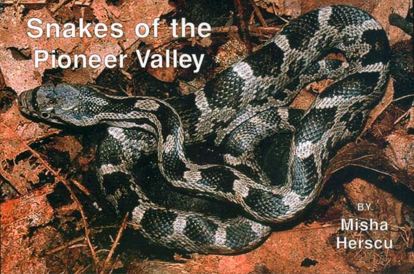 Snakes of the Pioneer Valley - Front Cover